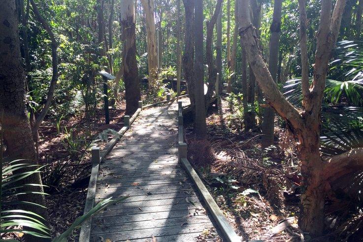 Rainforest Walk Huxtable Park