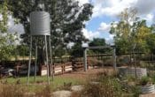 Logan Reserve, Playground