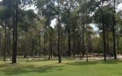 Nature Play, South Brisbane Playground