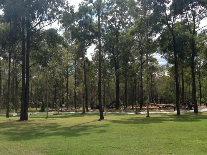 Karawatha Forest Park in Karawatha