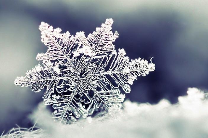 snow flake, snow