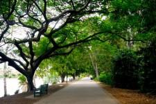 Brisbane City Botanic Gardens_Brisbane River