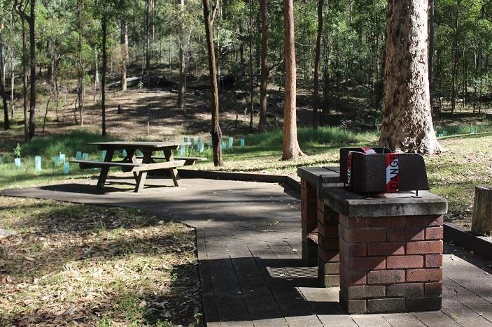 bunyaville picnic area 2