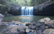 Day Trips for Brisbane Families - How to get to Lips Falls, Beechmont, Gold Coast Hinterland
