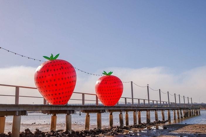 giant strawberries on jetty, sandstone point, strawberry festival