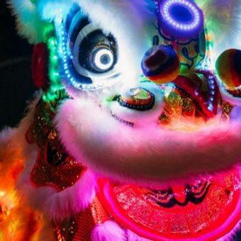 chinese dancing dragon, illuminated dragon, light up dancing dragon. night noodle markets entertainment