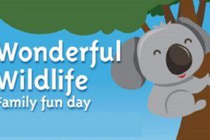 wildlife celebration indigiscapes