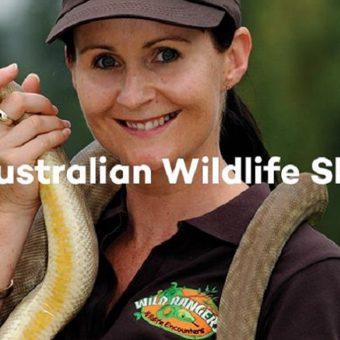 Brookside holiday show Australian Wildlife