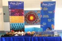 Ocean Stars Marine Education incursions