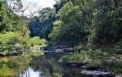 River at Gardners Falls