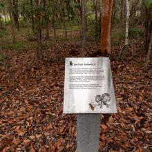 Teviot Park information