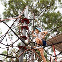 Teviot Park climbing