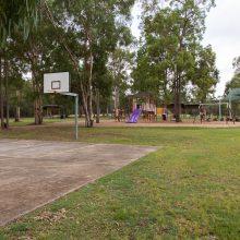 Teviot Park basketball