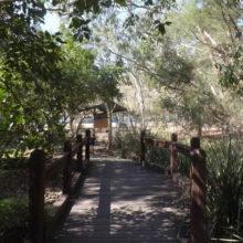 Ipswich Nature Centre in Queens Park