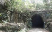 Old train tunnel walk sunshine coast
