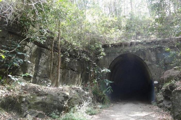 Old train tunnel walk sunshine coast