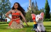 Moana Voyager Parties