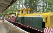 woodford railway and diesel train