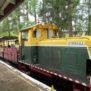 woodford railway and diesel train