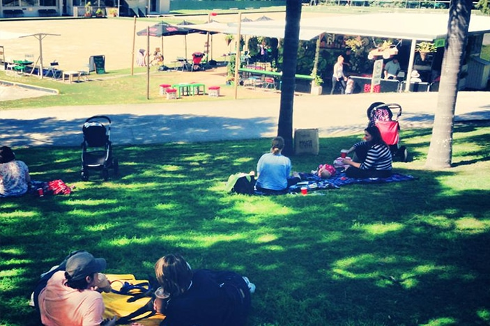 Families having a picnic on the grass