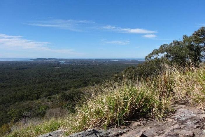 Mt Tinbeerwah Lookout, bushwalks for families, Sunshine Coast walks