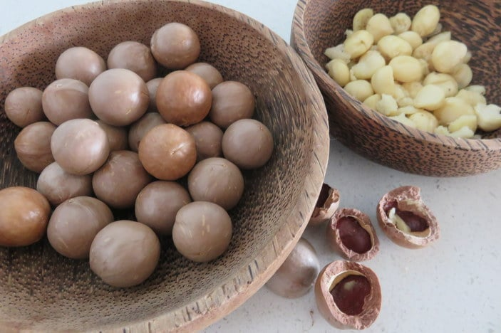 Bowls of macadamia nuts in shells and shelled