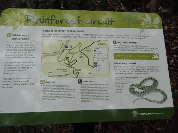 Rainforest Circuit, Main Range National Park