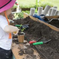 Redcliffe_Garden_and_Lifestyle_Expo_Kids_Moreton_Bay_Region