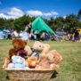 Teddy Bears Picnic , teddy bears in basket