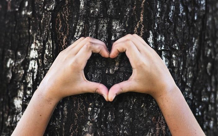 eco friendly fundraising ideas