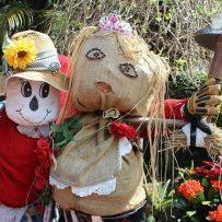 Tamborine Scarecrow festival, scarecrows