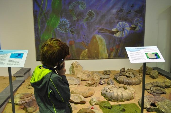 marine fossil museum