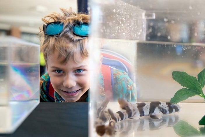 Ocean Life Marine Education