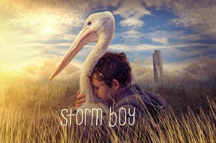 Storm boy image, pelican, Mr Percival