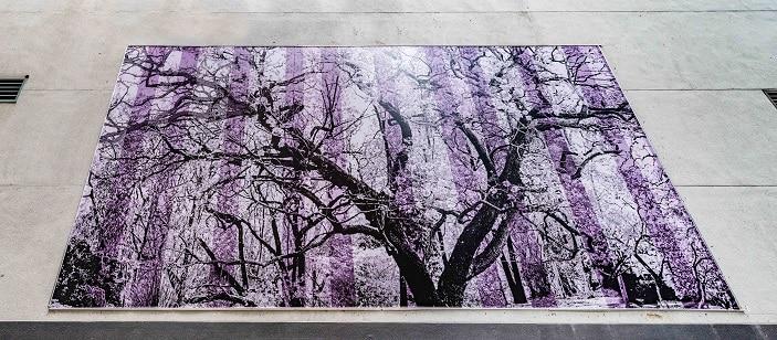 apt9 artwork purple jacaranda
