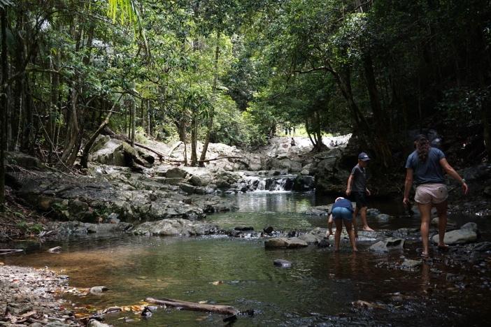cougal cascades