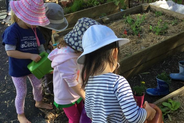 Chelmer Station Community Kindergarten