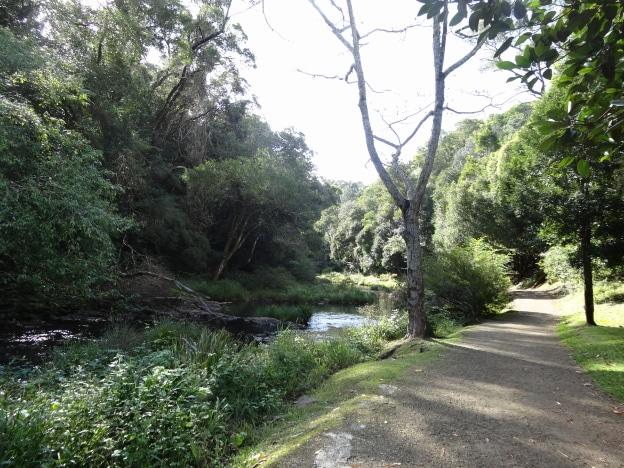 walking track maleny