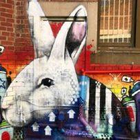Brisbane Street Art Festival art by lucks
