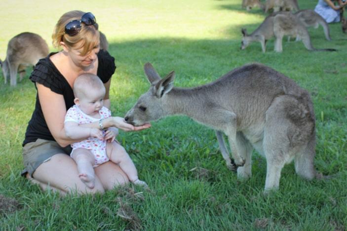 Mother and baby hand-feeding a kangaroo