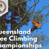 National Tree Climbers championships, tree climbing, man climbing tree with harness