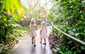 Two girls walking through tropical sky dome at Botanic Gardens Mount Coot-tha