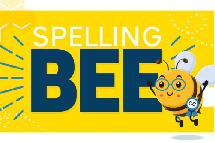 Spelling Bee   Brisbane Kids