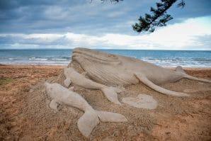 Welcome_Humpback_Whales_sand_sculptureBrisbane_Whale_Watching_Moreton_Bay_Region_Queensland, whale sand sculptures