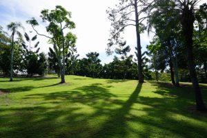 greenspace anzac park toowong