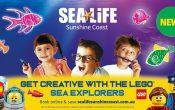 sealife sunshine coast