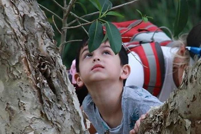 The Wonderful World of Wow Kids go wild, boy exploring nature