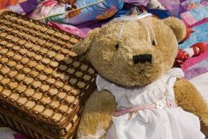 Teddy Bear, Teddy Bears Picnic