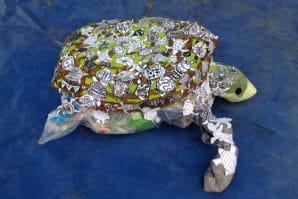 Turtle art Hatchery Competition