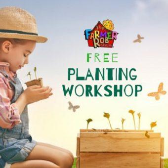 farmer robs planting workshop, child planting seedlings